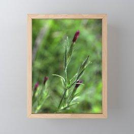 Pink Lipstick Flower Buds Framed Mini Art Print