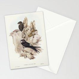 Vintage birds Stationery Cards