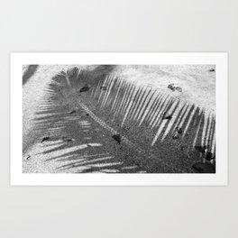 Silver Shadows Art Print