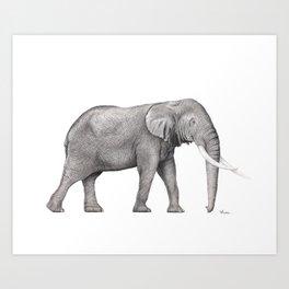 Bull Elephant  Art Print