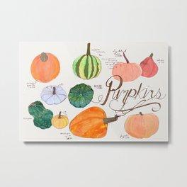 Fresher than the Farmers Market: Pumpkins Metal Print