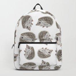 Hedgehog Jamboree Backpack