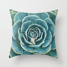 echeveria. succulent photo Throw Pillow
