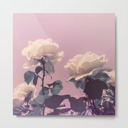 Vintage Spring Pearl White Roses Lavender Sky Metal Print