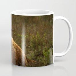 Scottish Highland hairy cow Coffee Mug
