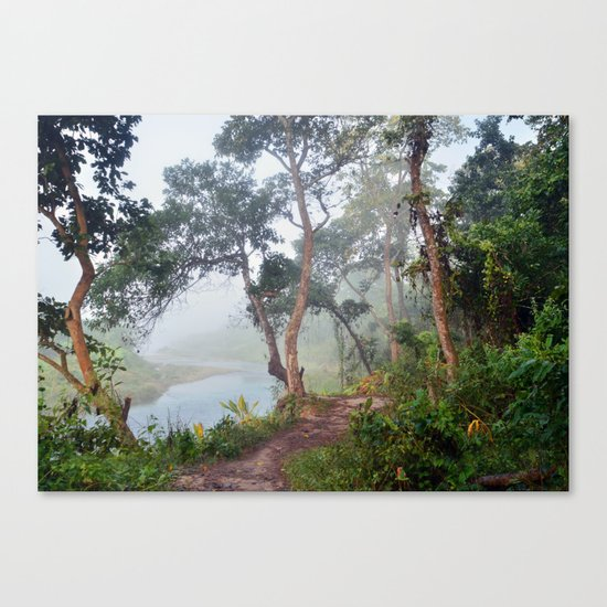 Jungle in Royal Chitwan National Park, Nepal. Canvas Print