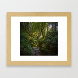 Steep Ravine 01 Framed Art Print