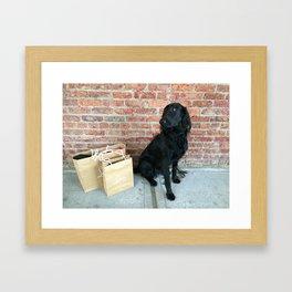 Puppy LOUBe Framed Art Print