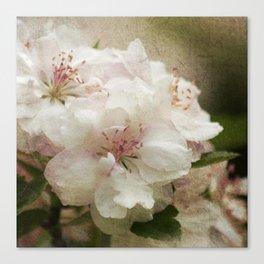 Blossom squared Canvas Print