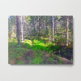 Welcome To The Woods Metal Print