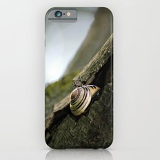 A Safe Place to Rest Slim Case iPhone 6s