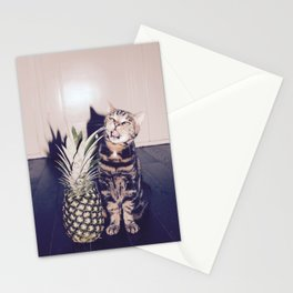 Cat and the pineapple Stationery Cards