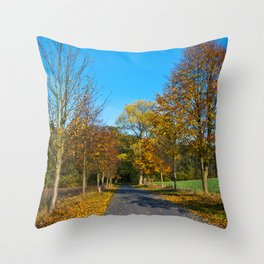 Autumnal feeling of October Throw Pillow