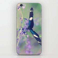 Blue Garden Butterfly iPhone & iPod Skin