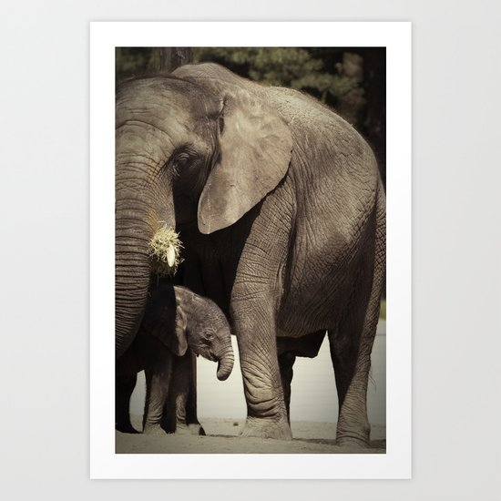 Elephants, mother and child Art Print