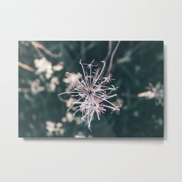 Beauty in Death Metal Print