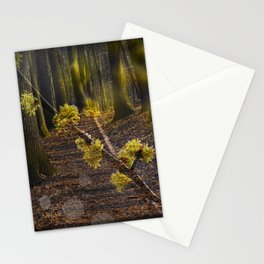 Walking through the forest in early spring Stationery Cards