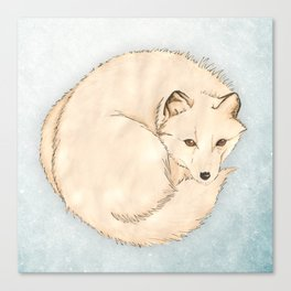 Isatis (Artic Fox) Canvas Print