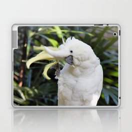 Sulfur-Crested Cockatoo Salutes the Photographer Laptop & iPad Skin