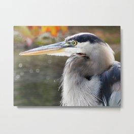 Heron expression Metal Print