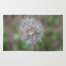 Common Dandelion Rug