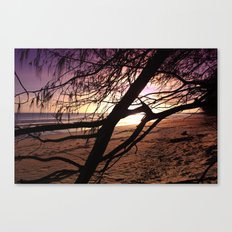 Early morning beach walks are filled with treasures Canvas Print