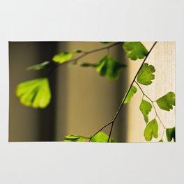 Leaflets In The Light Rug