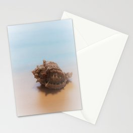 Murex Shell Stationery Cards