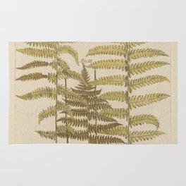 Vintage Fern Botanical Rug