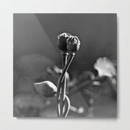 Floral Embrace - Poppy Metal Print