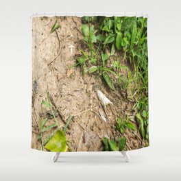 Surfacing, Killing Fields, Cambodia Shower Curtain