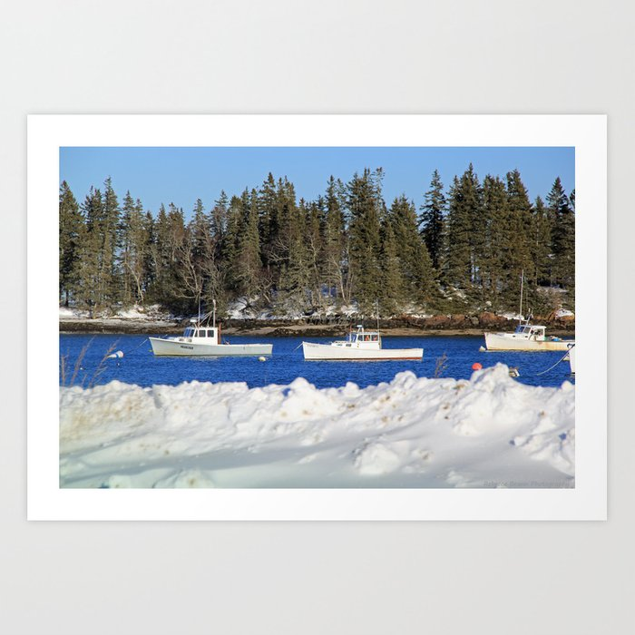 Cold Waters Art Print by beckywilcoxbrann