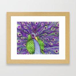 Vibrant Majestic Peacock  Framed Art Print