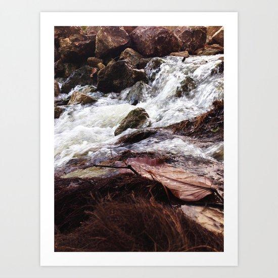 Brown Creek Art Print