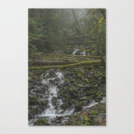 Roadside Creek Canvas Print