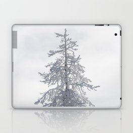 Yellowstone National Park - Ice Covered Tree Laptop & iPad Skin