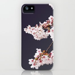 Cherry Blossoms (illustration) iPhone Case