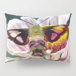 Hummingbird Moth Pillow Sham