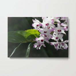 Orchid pattern Metal Print