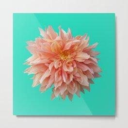 Flower Petals Metal Print