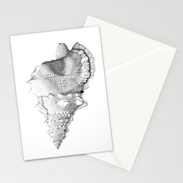 Conch Shell Stationery Cards
