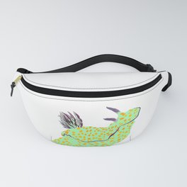 Chromodoris hintuanensis Fanny Pack