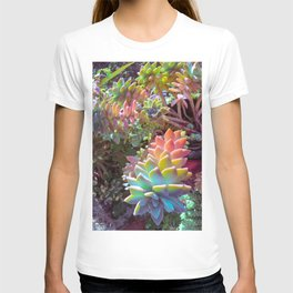 Succulent Rainbow T-shirt