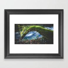 Enchanted magical forest Framed Art Print