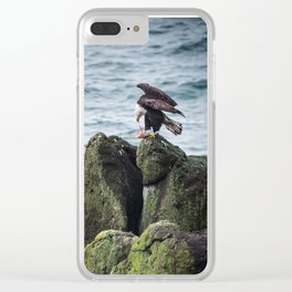 Bald Eagle Eating Prey at Yaquina Head Lighthouse Oegon Clear iPhone Case