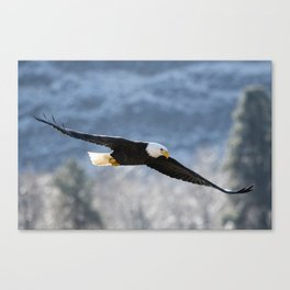 Frosty Glide Canvas Print
