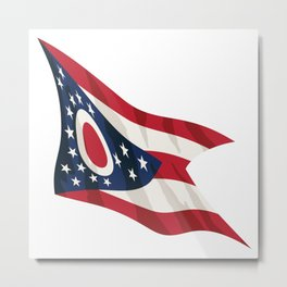 Ohio State Flag Metal Print