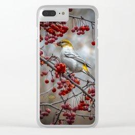 Pine Grosbeak Clear iPhone Case