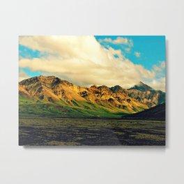 Denali National Park Metal Print
