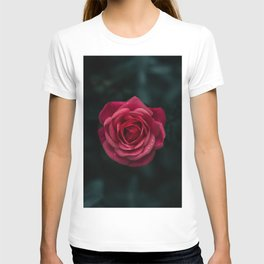 Flower Photography by aaron staes T-shirt